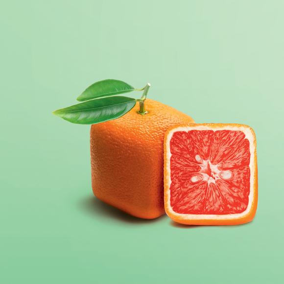 Orange eckig