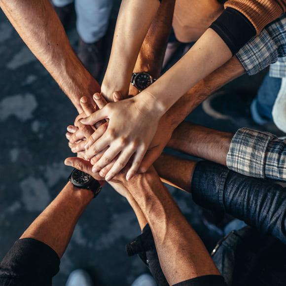 Diversity Report Baumwidget - mehrere Hände übereinander