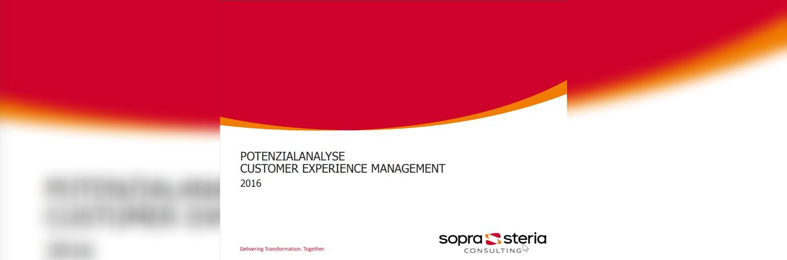 Potenzialanalyse Customer Experience Management 2016